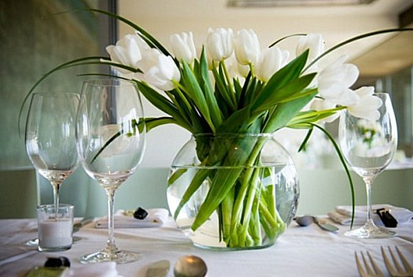 MP Tulips